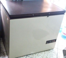 Vestfrost 12 cubic ft Deep Fridge