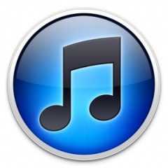 iTunes id for Apple Product