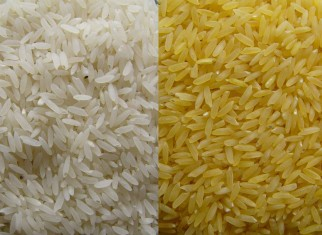 Rice for Sale
