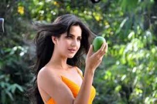 Chemical Free Himsagar Langra Mango