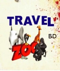 International & domestic air ticket By Travelzoo Holiday