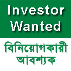 Financial Investor Wanted for IT Firm