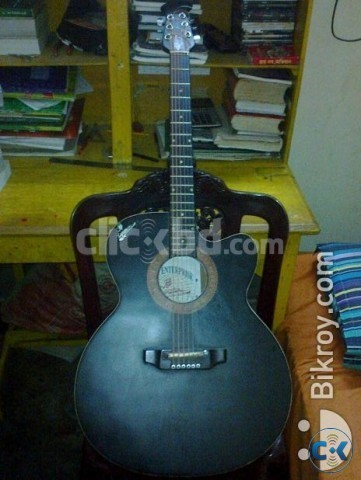 signature topaz acoustic guitar for sale clickbd. Black Bedroom Furniture Sets. Home Design Ideas