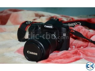 CANON 50D with 55-250mm IS 18-55mm IS Lens