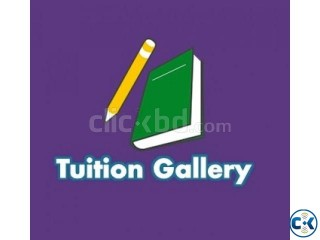Looking for Private Tutor