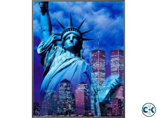 USA 100% Visa Success Process