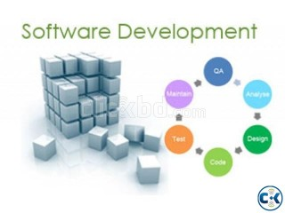 Customized Software Development
