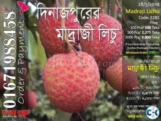 Madraji Lichu of Dinajpur Code 5281
