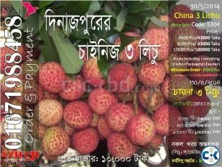 China 3 Lichu of Dinajpur Code 5304