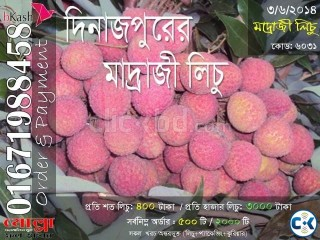 Madraji Lichu of Dinajpur Code 6031