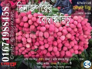Bombay Lichu of Dinajpur Code 6042