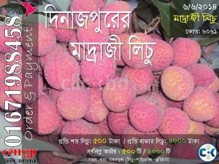 Madraji Lichu of Dinajpur Code 6061