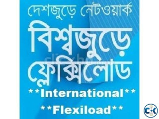 International Flexiload