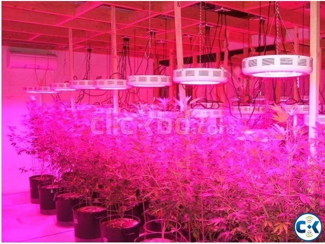LED grow light 80W | ClickBD large image 0