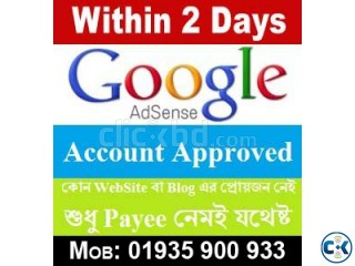 Within 2 Days GOOGLE Adsense Account Approved