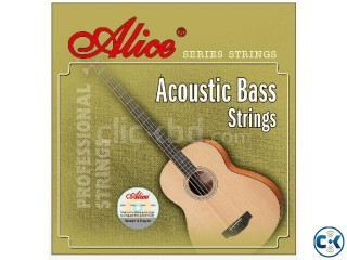 Acoustic Guitar BASS 4 string