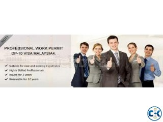 Professional Work Permit for IT Professional Only