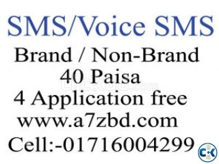 Bulk sMS Voice SMS