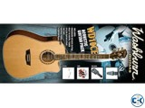 Washbourn Guitar WD10CE
