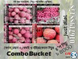 Bedena China 3 Haria Bombay Lichu Combo Bucket