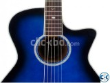 Daisy RoCk DRG Acoustic guitar
