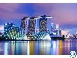 Dhaka to Singapore return air ticket