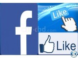 Facebook Fan Page like and promote