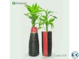 Indoor plants tree DT 09