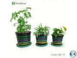 Indoor plants set