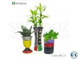 Decorative indoor plants package