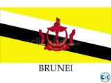 New Jobs offer available in Brunei