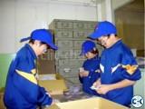Job in Japan