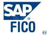 Complete Training of SAP FICO