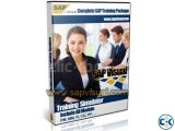 SAP Training Simulator