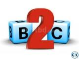 B2C Website Development iSovix
