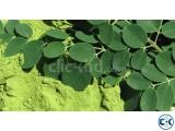 100 Pure Organic Moringa Oleifera Leaf Powder