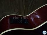 Fanndec Guitar