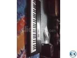 Casio CTK-3200 Model Semi professional Keyboard