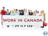 Job opportunity in CANADA!!!!