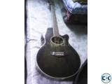 Jack Danny Acoustic