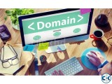 Domain Hosting Offer