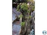Small image 3 of 5 for Flat with Land sale at Savar Bazar Bus stand urgent   ClickBD
