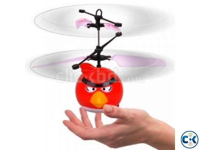 FLYING ANGRY BIRD-Magic in your hand | ClickBD large image 0