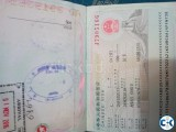 china job visa