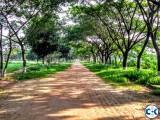 Green Model Town Plot-49 Road-9 Block- C Manda Dhaka.