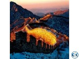 China 6 Month Multiple Visa Offer