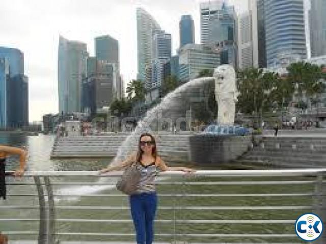 Singapore tourist medical working visa processing | ClickBD large image 0
