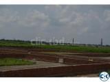 Fresh land beside Aminbazar