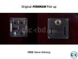 Guitar with Fishman Pick up