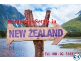 Higher Education In NewZealand